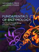 Fundamentals of Enzymology: The Cell and Molecular Biology of Catalytic Proteins