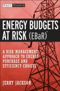 Energy Budgets at Risk (EBaR): A Risk Management Approach to Energy Purchase and Efficiency Choices