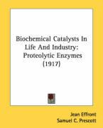 Biochemical Catalysts in Life and Industry: Proteolytic Enzymes (1917) - Effront, Jean