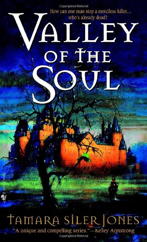 Valley of the Soul - Tamara Siler Jones