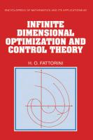 Infinite Dimensional Optimization and Control Theory
