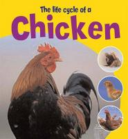 Life Cycle of a Chicken - Thomson, Ruth