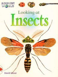 Looking at Insects (Discovery World) - David Glover