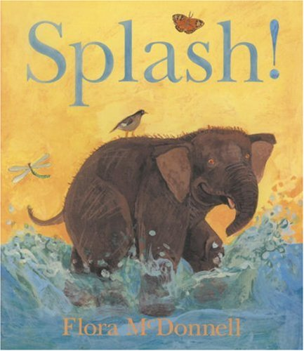 Splash! (Board Book Reprints) - Flora McDonnell