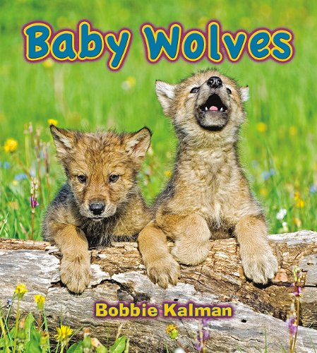Baby Wolves (It's Fun to Learn About Baby Animals) - Bobbie Kalman