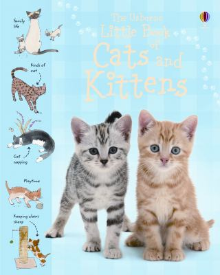 Little Book of Cats and Kittens : Internet-Linked - Sarah Kahn