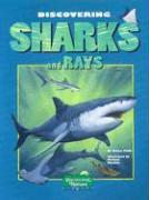 Discovering Sharks and Rays [With Stickers] - Field, Nancy