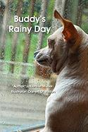 Buddy's Rainy Day