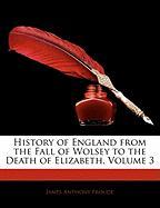 History of England from the Fall of Wolsey to the Death of Elizabeth, Volume 3