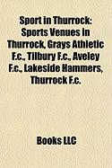 Sport in Thurrock: Sports Venues in Thurrock, Grays Athletic F.C., Tilbury F.C., Aveley F.C., Lakeside Hammers, Thurrock F.C.