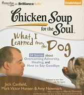 Chicken Soup for the Soul: What I Learned from the Dog: 34 Stories about Overcoming Adversity, Healing, and How to Say Goodbye