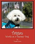 Tristan Works as a Therapy Dog - Lewis, Trudee