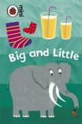 Early Learning Big and Little