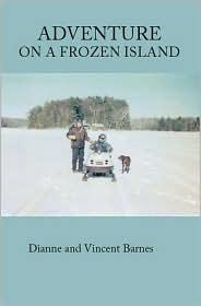 Adventure on a Frozen Island