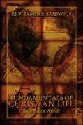 Fundamentals of Christian Life: In a Fallen World - Ludwick, Rev James R.