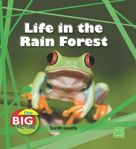 Life in the Rain Forest (The Big Picture: Homes) - Sarah Levete