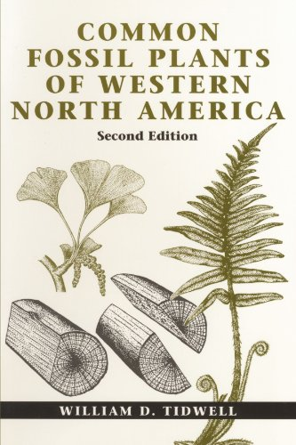 Common Fossil Plants of Western North America - William D. Tidwell