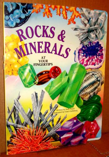 Rocks and Minerals (At Your Fingertips (McClanahan)) - Judy Nayer
