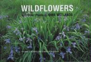 Wildflowers and Other Plants of Iowa Wetlands - Runkel, Sylvan T.; Roosa, Dean M.
