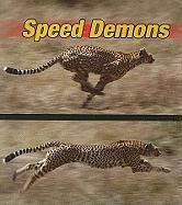 Speed Demons - Armentrout, David; Armentrout, Patricia