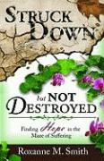 Struck Down But Not Destroyed: Finding Hope in the Maze of Suffering