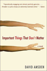 Important Things That Don't Matter: A Novel - David Amsden