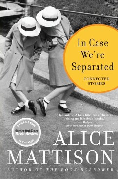 In Case We're Separated: Connected Stories - Mattison, Alice