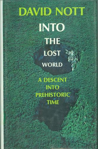 Into the lost world