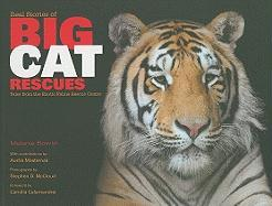 Real Stories of Big Cat Rescues: Tales from the Exotic Feline Rescue Center