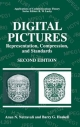 Digital Pictures: Representation, Compression and Standards - Arun N. Netravali; Barry G. Haskell