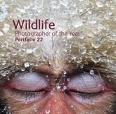 Wildlife Photographer of the Year. Portfolio 22 - Rosamund Kidman Cox (editor)