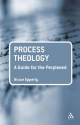Process Theology: A Guide for the Perplexed - Bruce G. Epperly