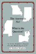 The Answer Is No! What Is the Question?: A Little Orphan's Search for the Meaning of Life