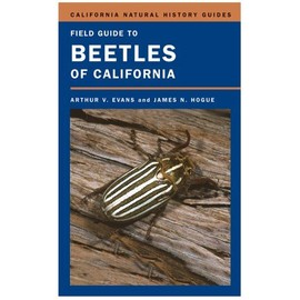 Field Guide To Beetles Of California - Arthur V Evans