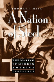 A Nation of Steel: The Making of Modern America, 1865-1925 - Thomas J. Misa