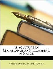 Le Sculture Di Michelangelo Naccherino in Napoli - Antonio Maresca Di Serracapriola