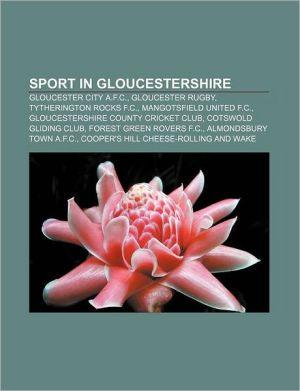 Sport in Gloucestershire: Gloucester City A.F.C, Gloucester Rugby, Tytherington Rocks F.C, Mangotsfield United F.C.