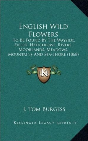 English Wild Flowers: To Be Found By The Wayside, Fields, Hedgerows, Rivers, Moorlands, Meadows, Mountains And Sea-Shore (1868) - J. Tom Burgess