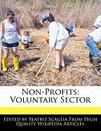 Non-Profits: Voluntary Sector