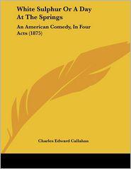 White Sulphur Or A Day At The Springs - Charles Edward Callahan
