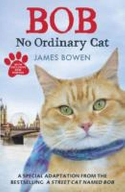 Bob - No Ordinary Cat - James Bowen