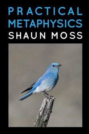 Practical Metaphysics - Shaun Moss