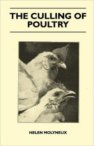 The Culling Of Poultry - Helen Molyneux