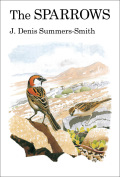 The Sparrows - Denis Summers-Smith
