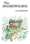 The Sparrowhawk - Ian Newton
