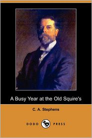 A Busy Year At The Old Squire's - C. A. Stephens