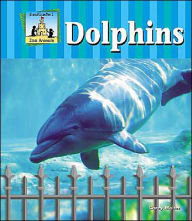 Dolphins - Carey Molter