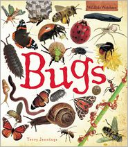 Bugs - Terry Jennings