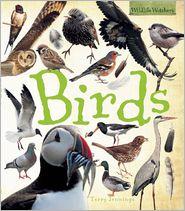 Birds - Terry Jennings
