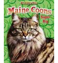 Maine Coons - Nancy White